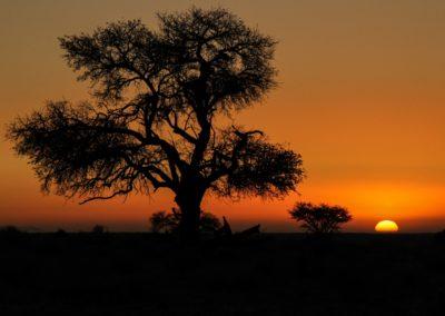 Abendidyll in Namibia.